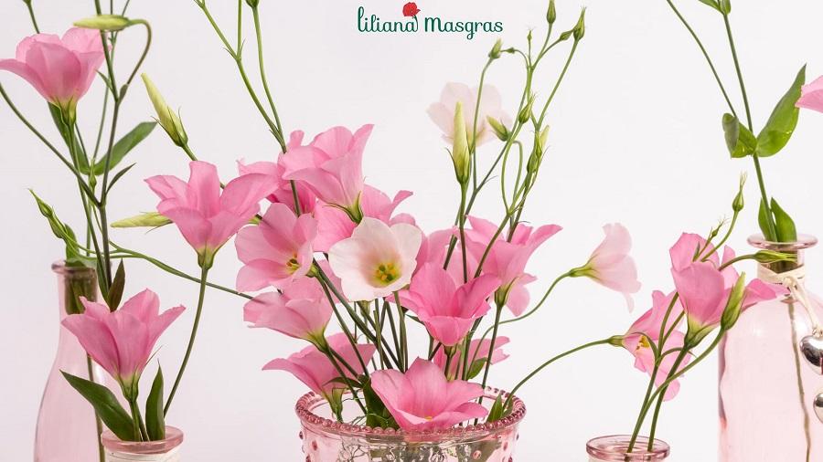 4 Lucrări de îngrijire minime și obligatorii a florilor tăiate