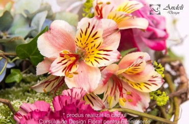 Alstroemeria – o floare veselă și colorată