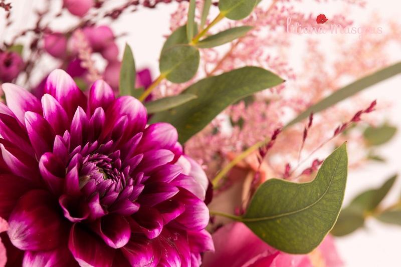 Dalia – floarea din gradină