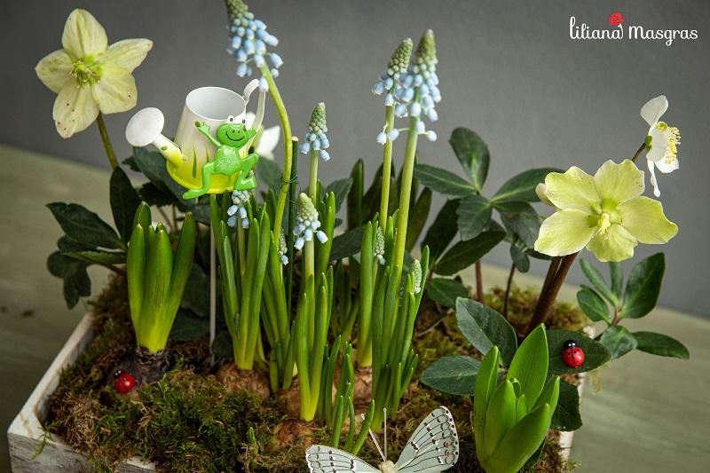 Fascinația florilor cu bulbi